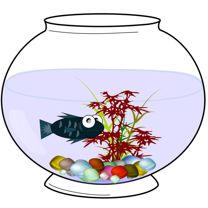 aquarium-156725_1280.png