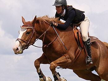 Tävlingsklädsel | Hästhoppning iFokus